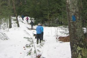 Winter Walking: Snowshoeing Family Fun