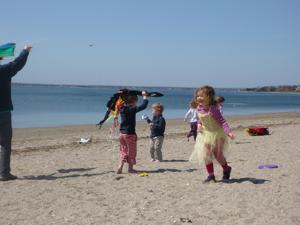 Kites: photo by K.Killilea - Kid o Info