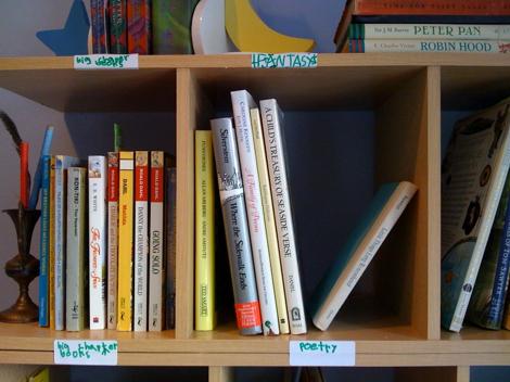 make a mini library