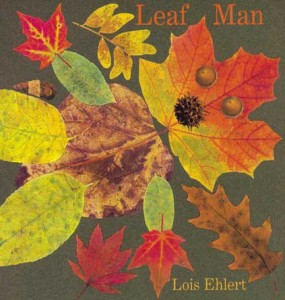 Leaf Man book cover