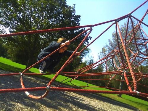 Climbing the Spider Web