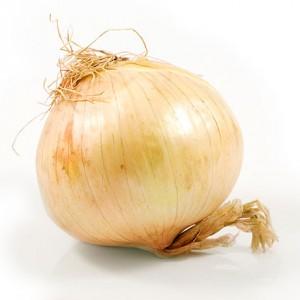 vidalia-onion