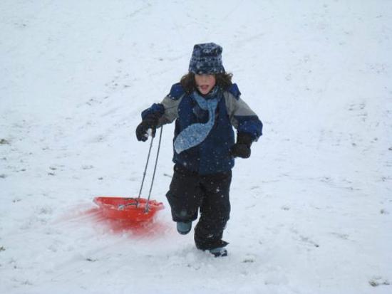 D-Snow-Sled