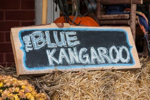 Blue Kangaroo-2