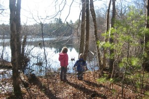 Family Hiking: Audubon's Maxwell Mays Wildlife Refuge