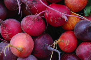 Bold, Beautiful, Beets!