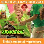 RWPark Zoo Camp
