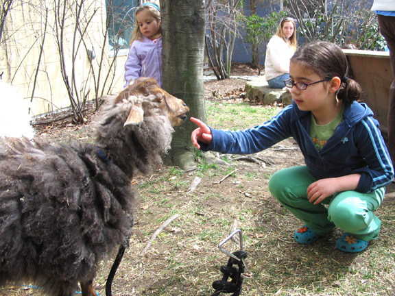 April Vacation Activities at Providence Children's Museum