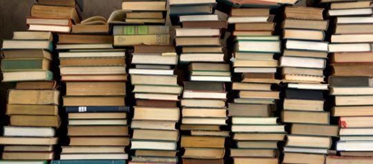 Children's Books as Bridges