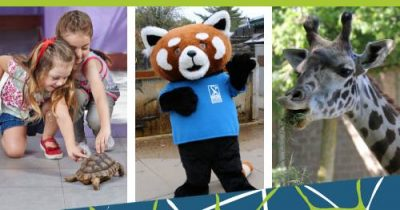 Free admission on Black Friday @ Roger Williams Park Zoo