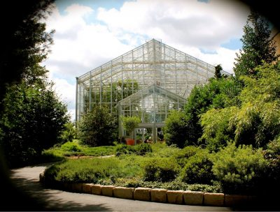 Family Fun Craft (All ages) @ Roger Williams Park Botanical Center